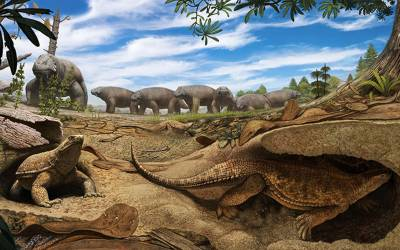 24 کروڑ سال پرانی ہڈی میں سائنسدانوں کو کینسر مل گیا
