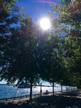 toronto-waterfront-on-lake-ontario-3