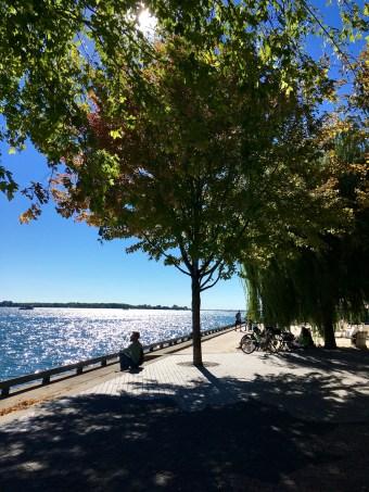 toronto-waterfront-on-lake-ontario