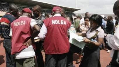 Drugs Adamawa Command National Laws Enforcement Agency Ndlea