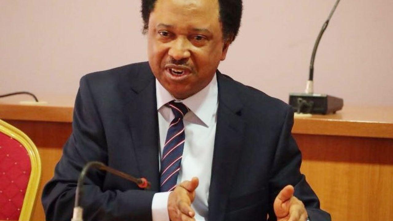 shehu 1 sani - Shehu Sani reacts as Akpabio withdraws from Akwa Ibom Senatorial rerun election