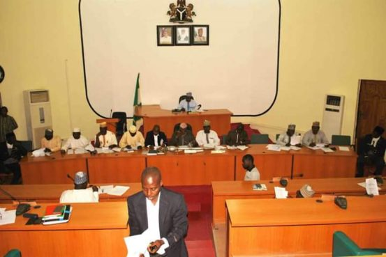The leader of the majority in the Niger Assembly has been removed