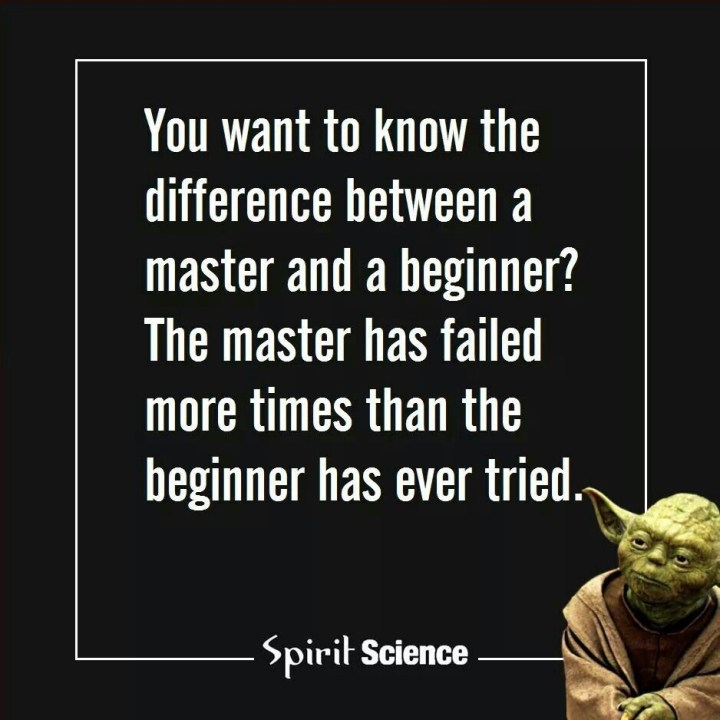 You want to know the difference between a master and a beginner? The master failed more times than the beginner has ever tried. Yoda quote