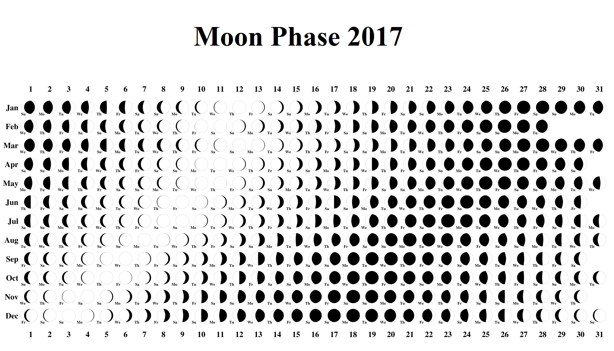 Moon Phases Gallery