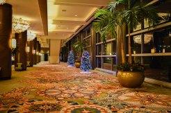 Hilton Hotel Autorama