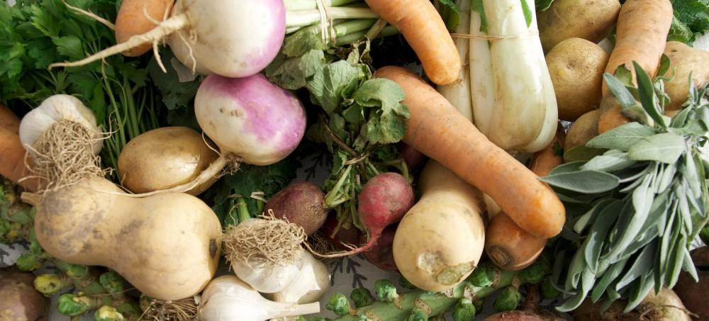 Alimentation   le local a la cote – DAILY SCIENCE a2333ce6cca4