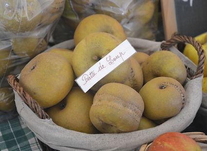 """Pommes """"Pattes-de-loup"""". © Marianne Casamance CC BY-SA 4.0"""