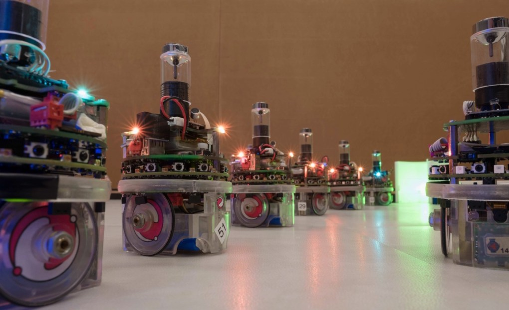 Alignés, les robots montrent à leurs congénères le chemin à suivre.