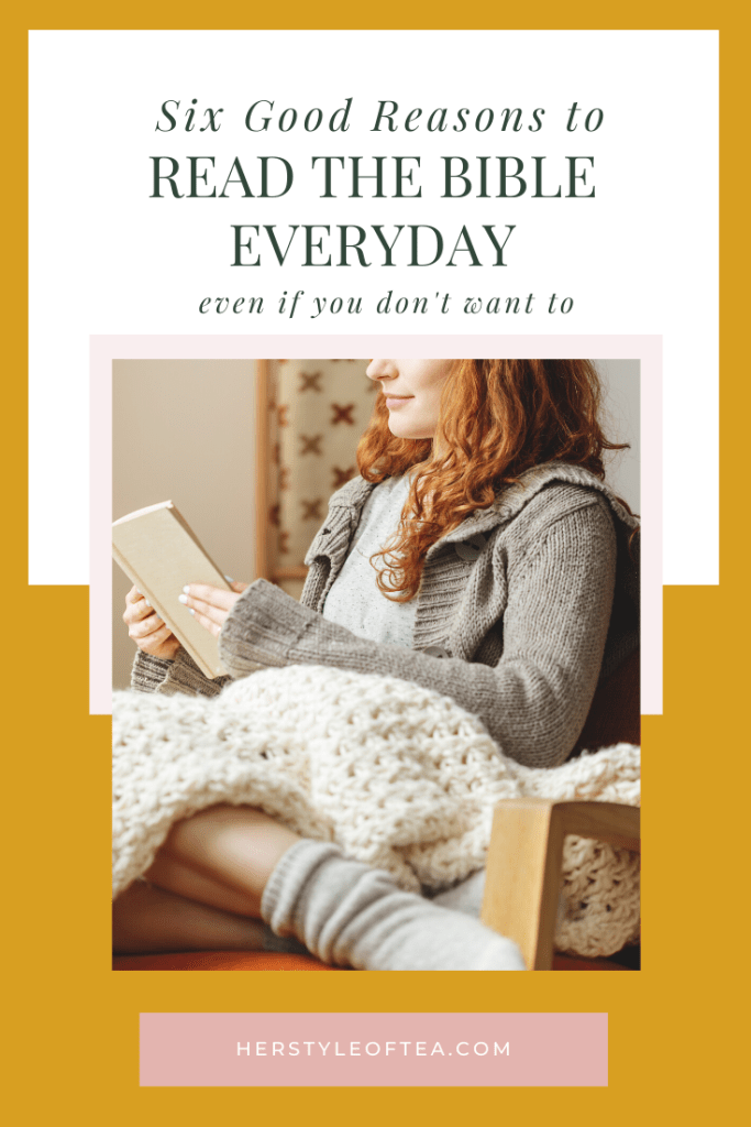 Is it important to read the Bible everyday? I would say yes. Read the article to find out why. Read Bible for Beginners | Bible Plan | Read Bible Daily | Bible Study Time | Bible Reading | Bible Scriptures | Bible for Women | Bible Facts