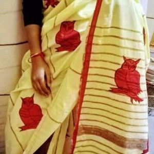 Woman's Handloom Cotton Applic Saree 4