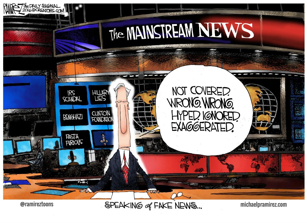 Image result for cartoons branco fake news media
