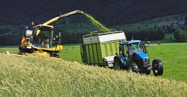 New Zealand's dairy farmers are experiencing losses lately due to low milk prices. (Photo: Ingram Publishing/Newscom)