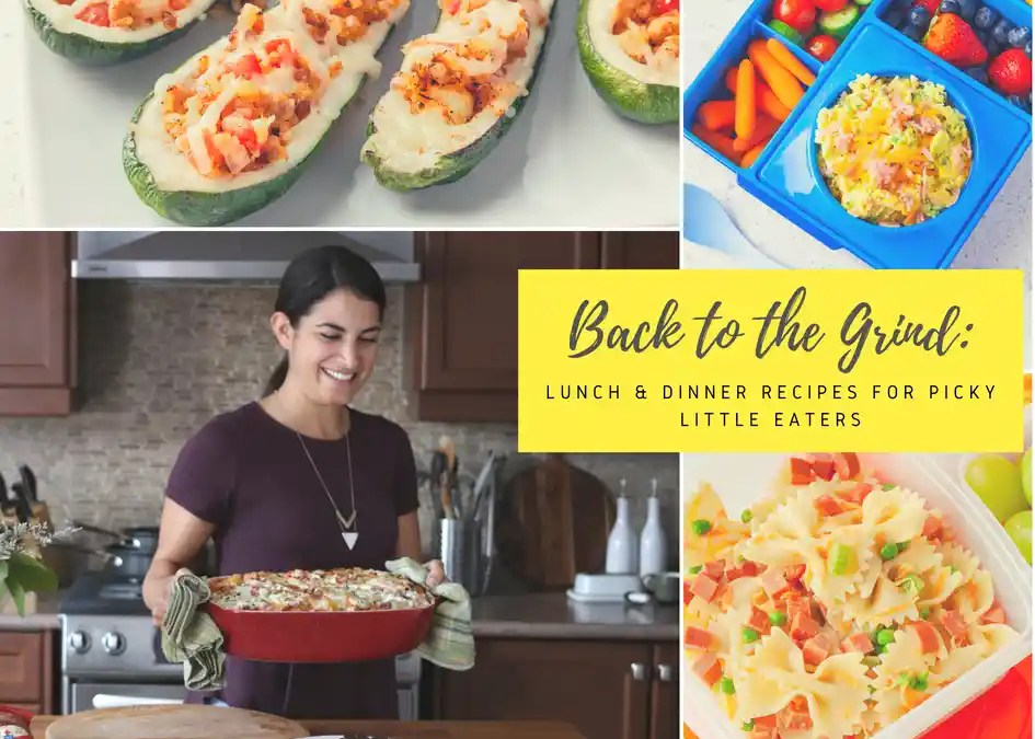 Back to the Grind: Lunch & Dinner Recipes for Picky Little Eaters