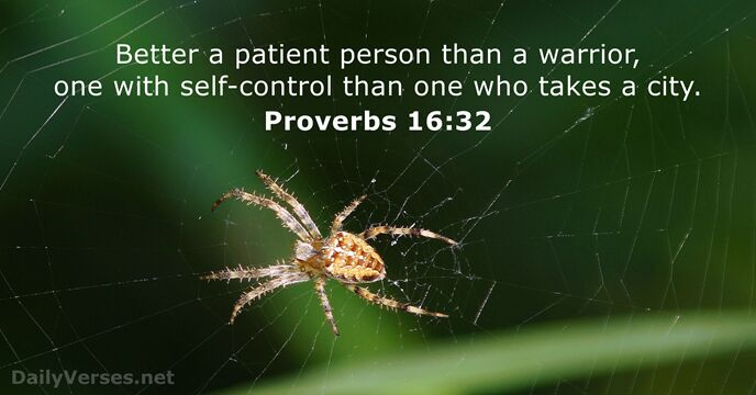 Proverbs 1632 Bible Verse Of The Day