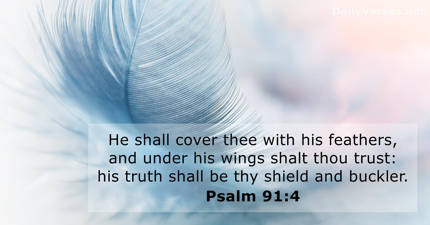 About Verses Bible Protection