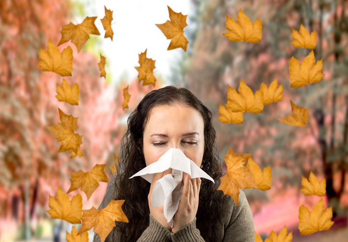 fall allergies