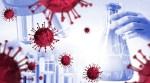 کورونا وائرس ، دنیا بھر میں ہلاکتیں4477144ہوگئیں