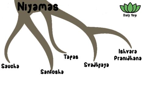 Daily Yogi Yamas - Saucha, Santosha, Tapas, Svadhyaya, Ishvara Pranidhana
