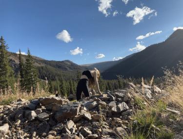 Ustrasana - Camel Pose - yoga pose yoga girl wearing black doing yoga outside in the rocky mountains