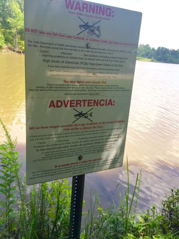 Signs warn fishers at Lake Crabtree of toxins in the waters that have affected the fish. Photo by Catherine Clabby