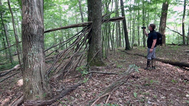 Kentucky's Deep Forests Could Hide an Important Piece of a Bigfoot Puzzle
