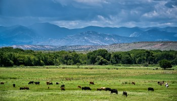 photo of expansive landscape in rural New Mexico