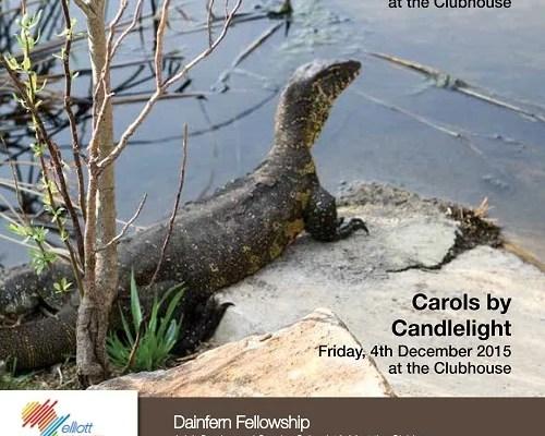 Infocus your community magazine – Dainfern Nature Association November 2015