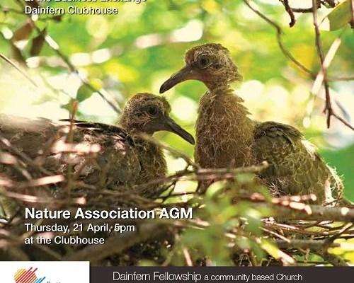 Infocus your community magazine – Dainfern Nature Association April 2016
