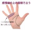 感情線と指の間の面積で心の広さを占う
