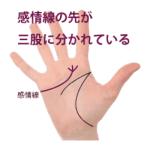 感情線の枝分かれ ②三股以上に分かれている手相