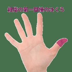 親指の第一関節にあるホクロ占い