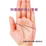 ラッキーな手相⑯ 小指に向かって伸びる「財運線」が長い
