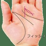 運命線のフィッシュ 魚紋
