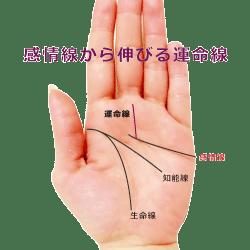 感情線から運命線が伸びる手相の画像