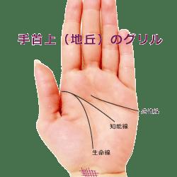 手首のグリル・格子紋