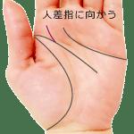 頭脳線の支線が人差し指の下に向かう