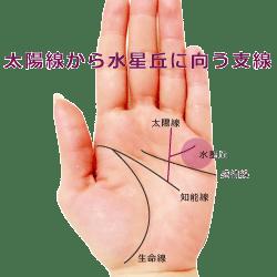 太陽線に小指に向かう支線がある手相