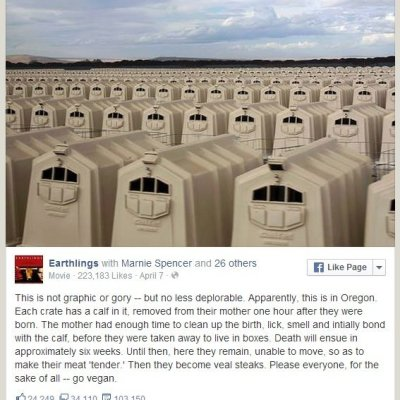 6 reasons why this facebook post is lying to you. Thanks Earthlings Movie!