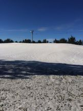 Winds created massive snow drifts. In some pens Steve says they had drifts that measured 12'x10' that were 300' long.