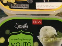 Mojito Sorbet & Sorbet with Champagne