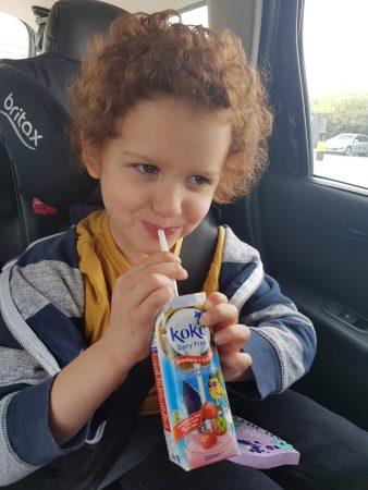 Koko Dairy Free Strawberry Milk