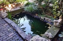 Albert's Garden Pond