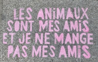 Slogan on the Sidewalk in Front of Un Monde Vegan
