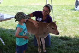 Listen to a calf's heartbeat at Kewaunee County Breakfast on the Farm!