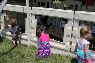 Cuddly calves and cute kids at the 2016 Breakfast!