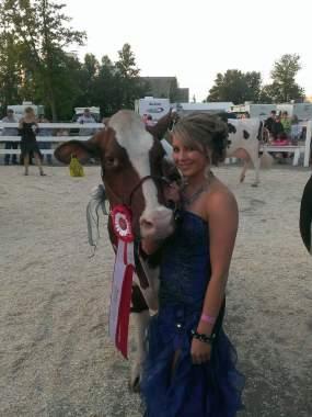 Junion Homestead Farm show cow