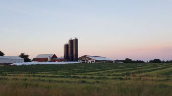 Junion Homestead Farm at dusk