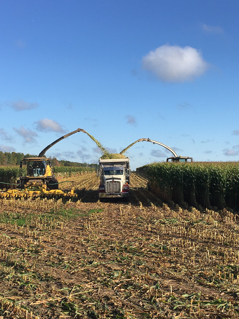Kinnard_Farms-KF_Harvest1