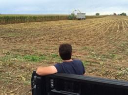 Kinnard_Farms-KF_Harvest4