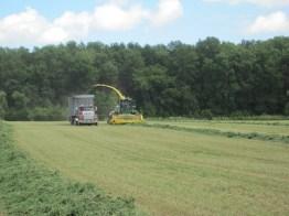 Kinnard_Farms-KF_Harvest8